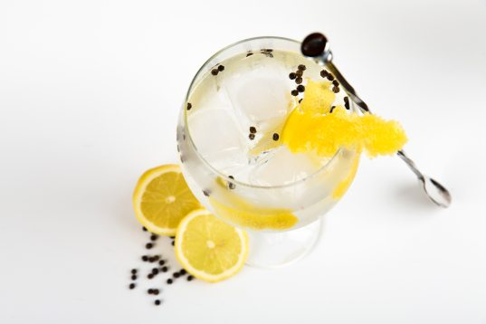 Alcohol in a cocktail with ice and citrus